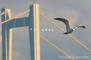 060101faraway