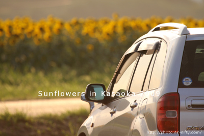 Sunf2009_54
